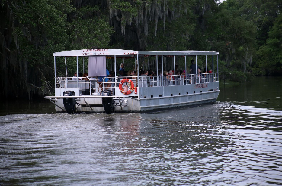 New Orleans Bayou Tour, what to expect on a bayou tour